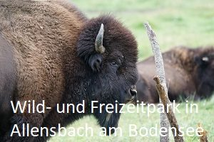 Ausflugsziel-Allensbach